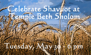 Shavuot wheat feature-1 copy
